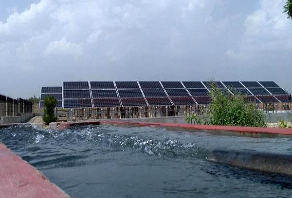 太阳能水泵多少钱一台